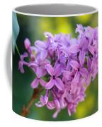 Dewdrops On Lilacs Coffee Mug