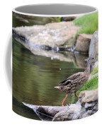 Diary Of A Mad Brown Duck Coffee Mug