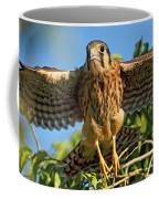 Digitally Enhanced Image, Painterly Coffee Mug
