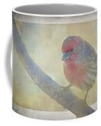 Digitally Painted Finch With Texture II Coffee Mug
