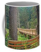 Discovery Trail Bridge Coffee Mug