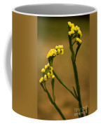 Distinctive Look Coffee Mug