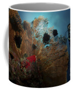 Diver And Sea Fan At Liberty Wreck Coffee Mug