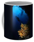 Diver And Soft Coral, Fiji Coffee Mug