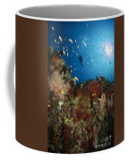 Diver Over Reef Seascape, Indonesia Coffee Mug