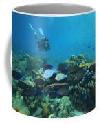 Diver Watching Blue Tangs, Doctorfish Coffee Mug by George Grall