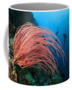 Divers And Whip Coral Coffee Mug
