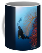 Divers Swimming By Sea Fans, Indonesia Coffee Mug