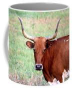 Do Not Mess With Me Coffee Mug