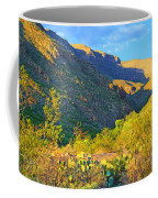 Dog Canyon Nm Oliver Lee Memorial State Park Coffee Mug