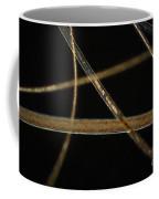 Dog Hair Coffee Mug