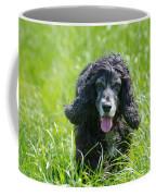 Dog On The Grass Coffee Mug