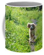 Dog Running In The Green Field Coffee Mug