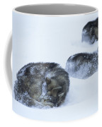 Dogs Sleep In Blizzard On Frozen Ocean Coffee Mug by Gordon Wiltsie