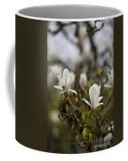 Dogwood Duet Coffee Mug