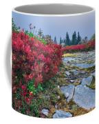 Dolly Sods Wilderness Coffee Mug