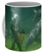 Dolphins Hover Near A Diver Holding An Coffee Mug by Luis Marden