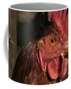 Domestic Chicken Coffee Mug