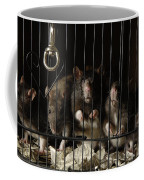 Domestic Rats At The George M. Sutton Coffee Mug