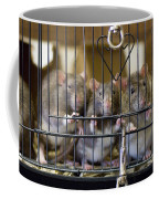 Domestic Rats At The Sutton Avian Coffee Mug