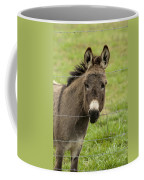 Donkey - The Beast Of Burden Coffee Mug