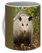 Don't Mess With Me Opossum Coffee Mug