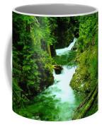 Double Falls  Coffee Mug