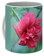 Double Hibiscus Coffee Mug