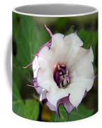 Double Purple Datura Coffee Mug