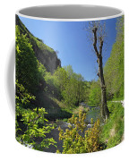Dove Valley - Beside The River Coffee Mug