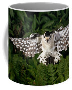 Downy Woodpecker In Flight Coffee Mug