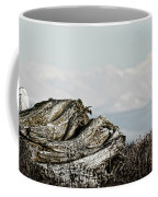 Dozing With Mount Baker Coffee Mug
