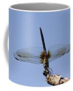 Dragonfly - Handstand Coffee Mug