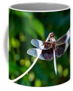 Dragonfly 0002 Coffee Mug