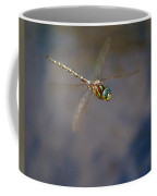 Dragonfly 2012 Coffee Mug