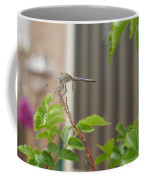 Dragonfly In Nature Coffee Mug