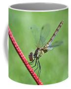 Dragonfly On A String Coffee Mug