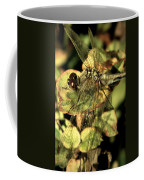Dragonfly Wingspan Coffee Mug