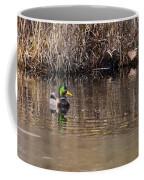 Drake In The Pond Coffee Mug