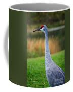 Dreaming Sandhill Crane Coffee Mug
