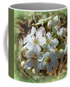 Dreams Of Pear Blossoms Coffee Mug