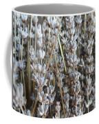 Dried Coffee Mug by Shannon Grissom