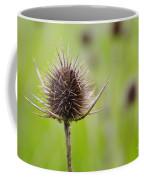 Dried Thistle Coffee Mug by Carlos Caetano