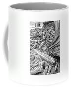 Driftwood Black Cat Coffee Mug by Jack Pumphrey