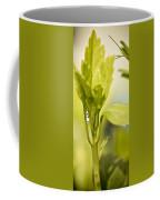 Drop Of Dew Coffee Mug