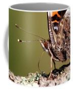 Drop Of Sweets Coffee Mug