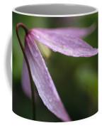 Droplets Of Dew On A Pink Wildflower Coffee Mug
