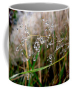 Droplets On Grass Coffee Mug