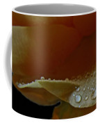 Drops Of Light Coffee Mug