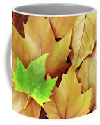 Dry Fall Leaves Coffee Mug by Carlos Caetano